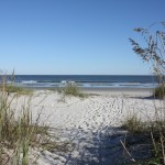 Palmetto Dunes Beach Access (2)